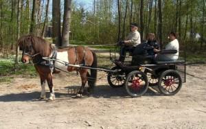 ari + vogn forår 2011-1